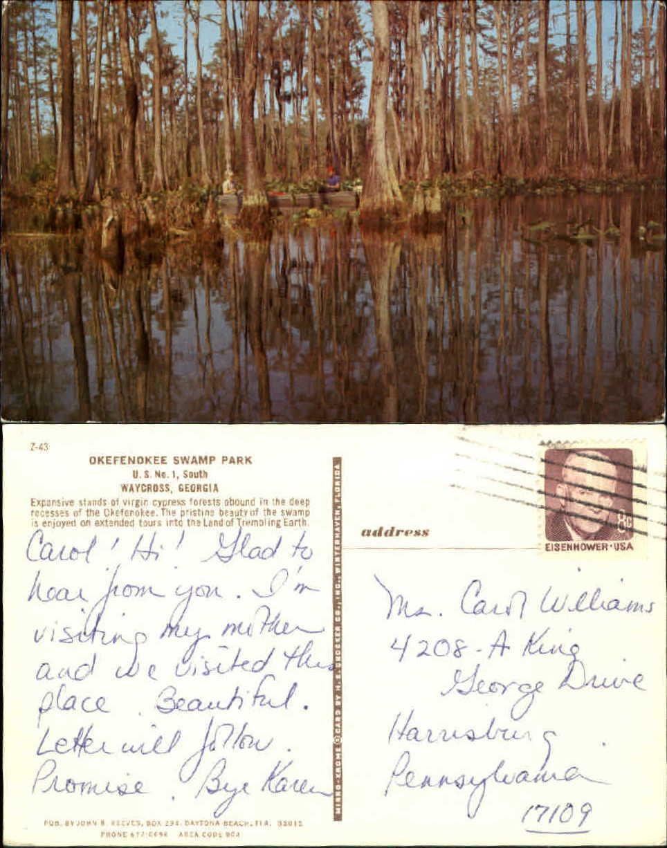 Okefenokee-Swamp-Park-Waycross-Georgia-GA-virgin-cypress-forests-1960s-postcard